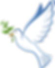 dove-41260_1280 (1).png
