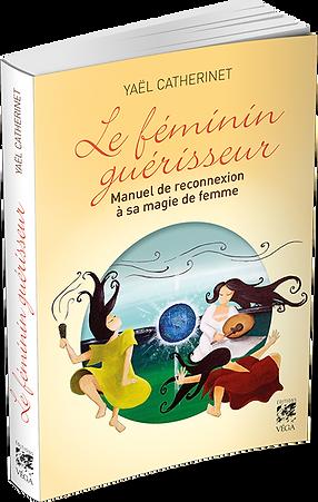 LeFemininGuerisseur-PROJ3d.png
