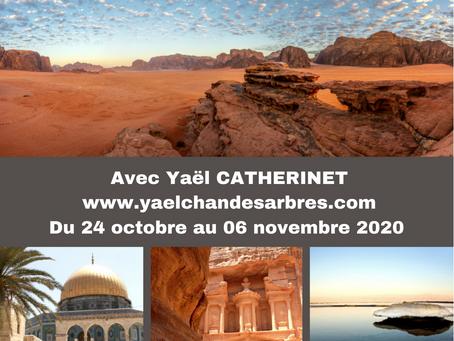 Féminin sacré , féminin guérisseur voyage initiatique sur les Terres d' Israël & Jordanie
