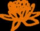 lotus-308947_1280 (3).png