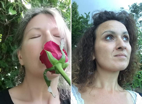La rose de  Vénus