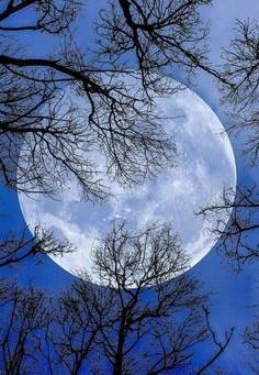 Lune pleine du 12 mars 2017