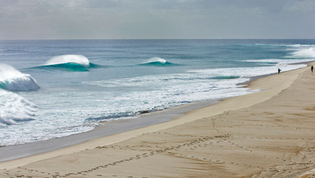 TIPOS DE FONDOS PARA SURFEAR