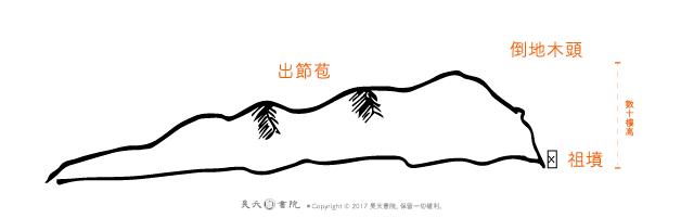 鄧小平祖墳風水 / 倒地木