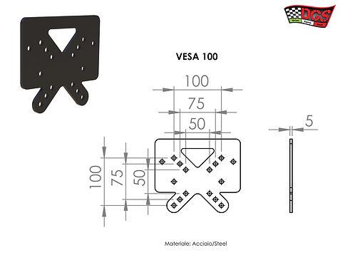 PIASTRA VESA 100.jpg