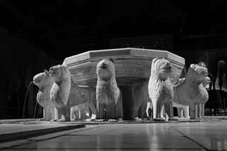 Alhambra Lions at Night