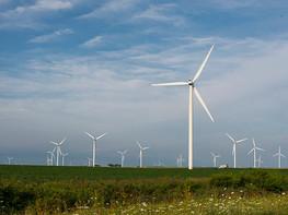 Stopzetten windmolens spaart roofvogels