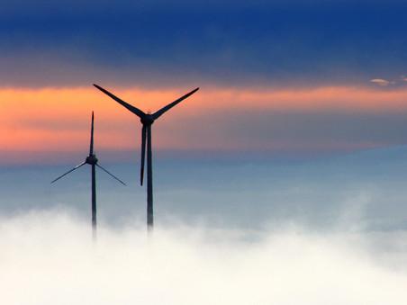 Dierbaar Flevoland spreekt in over Windpark Zeewolde