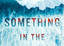Mini Reviews: Something in the Water by Catherine Steadman and Only Child by Rhiannon Navin