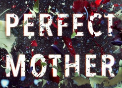Mini Reviews: The Perfect Mother by Aimee Molloy and Our House by Louise Candlish