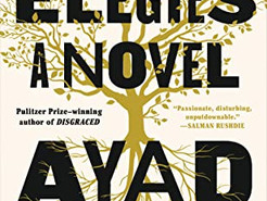 Book Review: Homeland Elegies by Ayad Akhtar