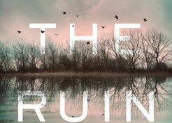 Mini Reviews: The Ruin by Dervla McTiernan and Unhinged by Omarosa Manigault-Newman