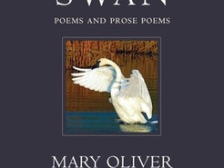 Book Review: Swan by Mary Oliver
