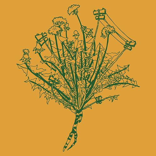Powerlines Grow Like Weeds