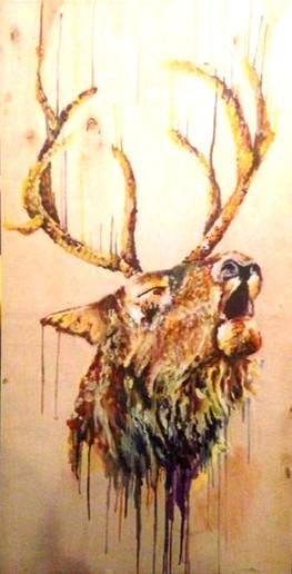 Elk Lover