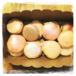 Cours Macarons Chocolat 2 XVI
