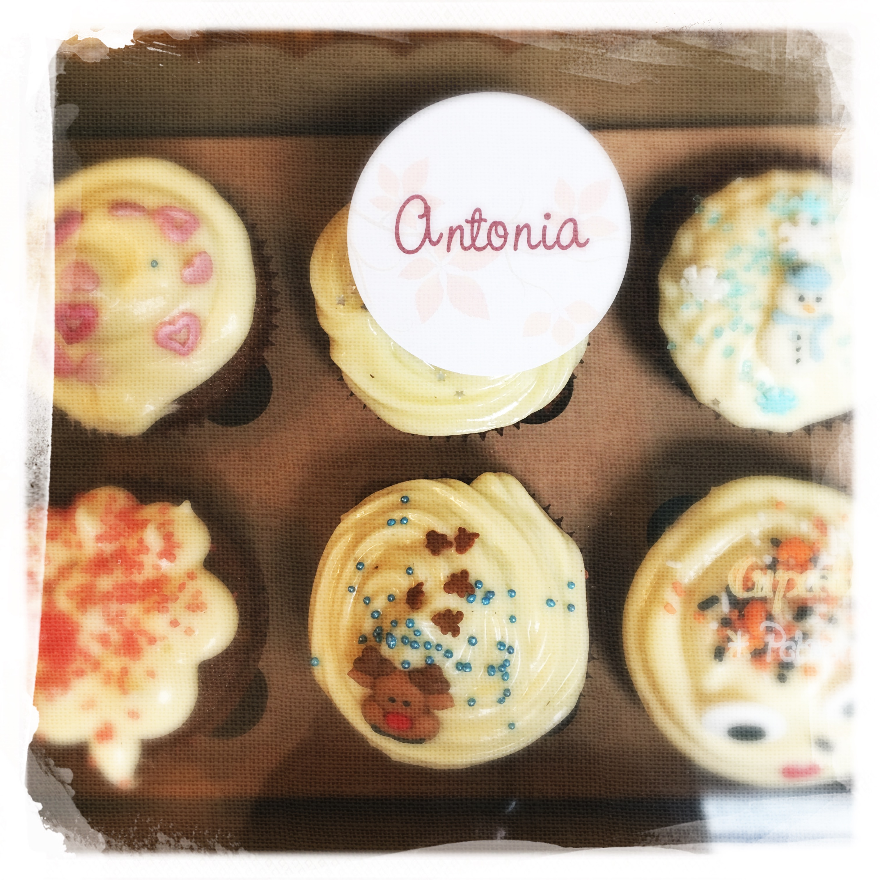 Cours Cupcakes Potiron/... XXVI