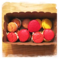 Cours Macarons salés 35