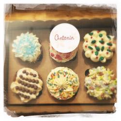 Cours Privé Cupcakes vegan 39