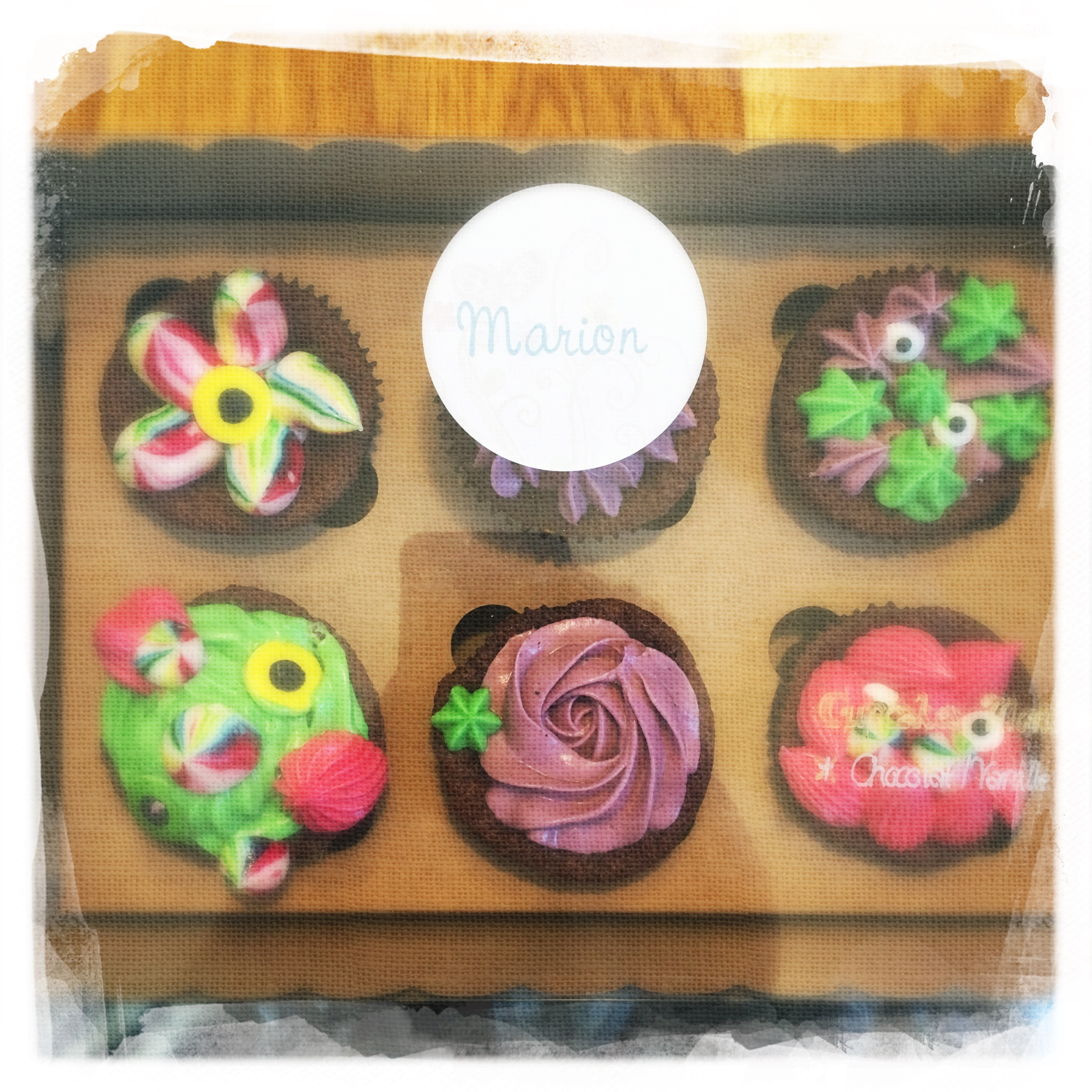Cours privé Cupcakes Monstres XIII