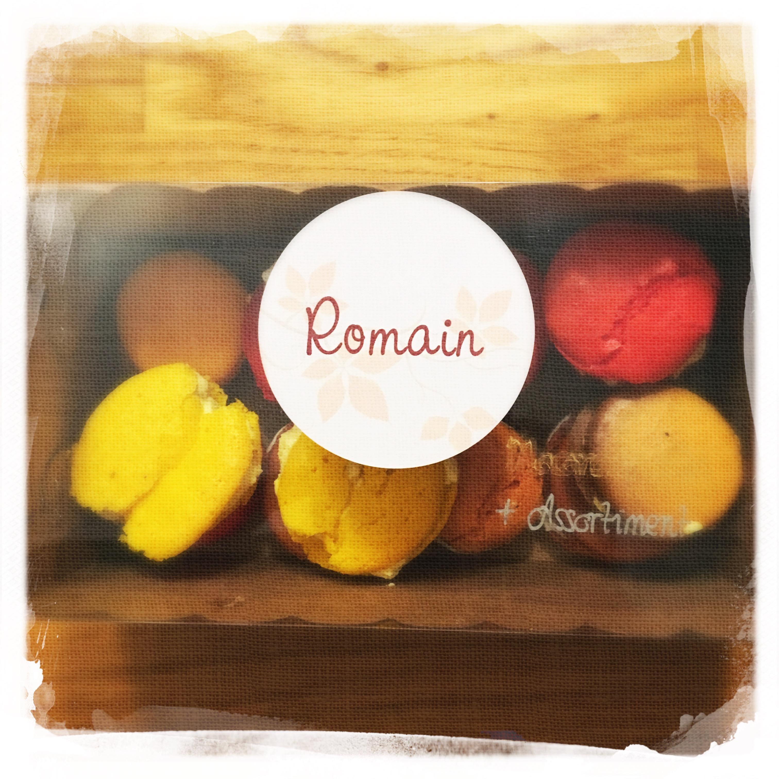 Cours Macarons salés 42