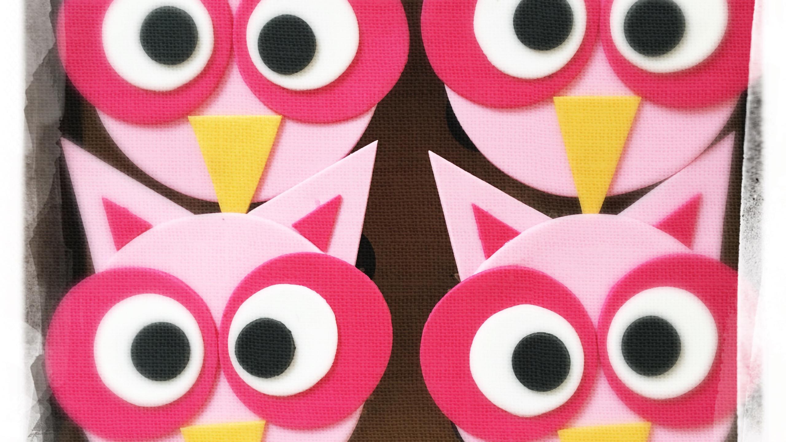 Cupcakes Hiboux II