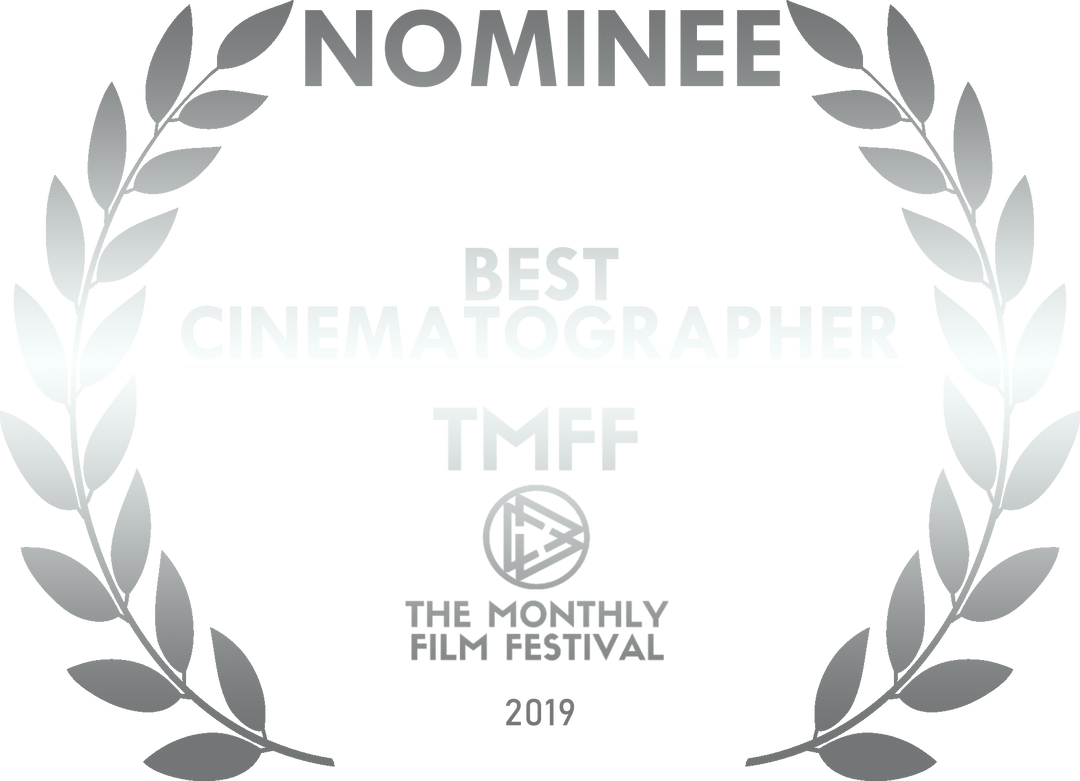 bestcinematographynominee19silver.png