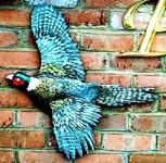 Pheasant Ridge Bird.jpg