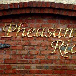 Pheasant Ridge.jpg