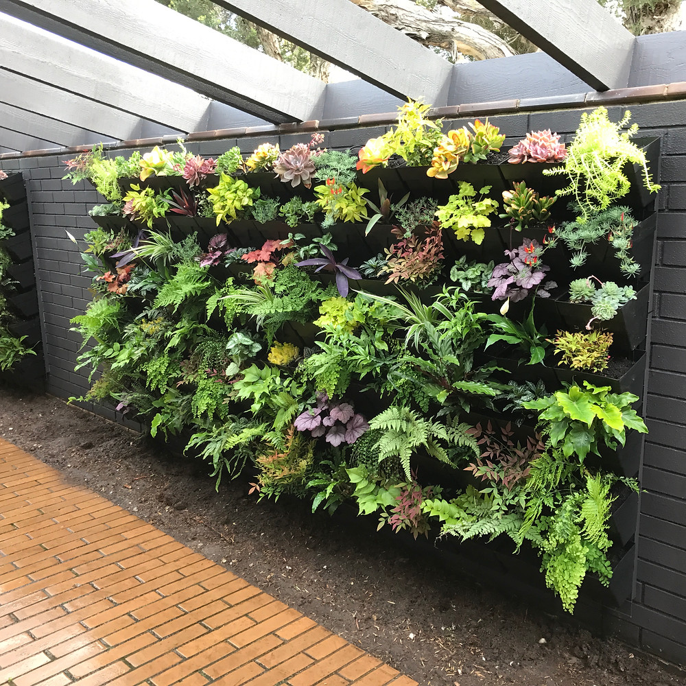 Gorgeous shade loving Vertical Garden with heaps of colour and texture