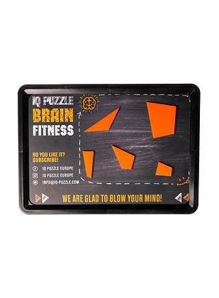 Board for IQ PUZZLE