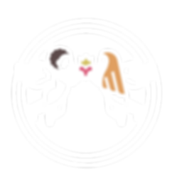 Psyche's Window logo - White.png
