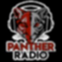 panther radio png.png