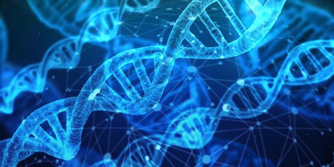 Genetikens värld