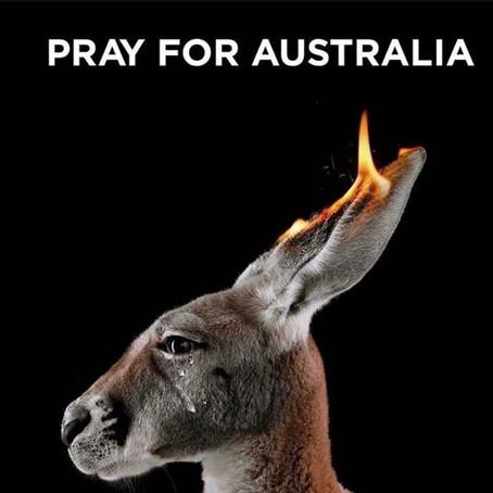 Let Us All Unite To Help Australia