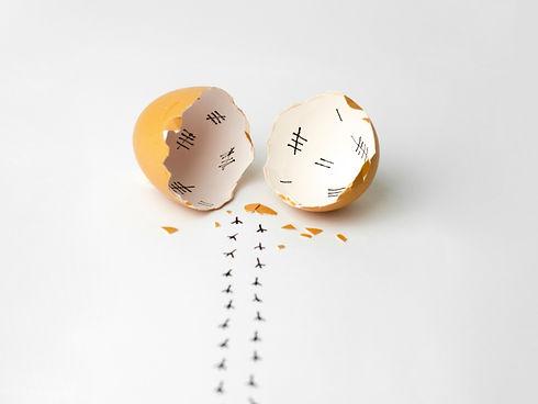 Egg%20Hatch_Low%20Res_edited.jpg