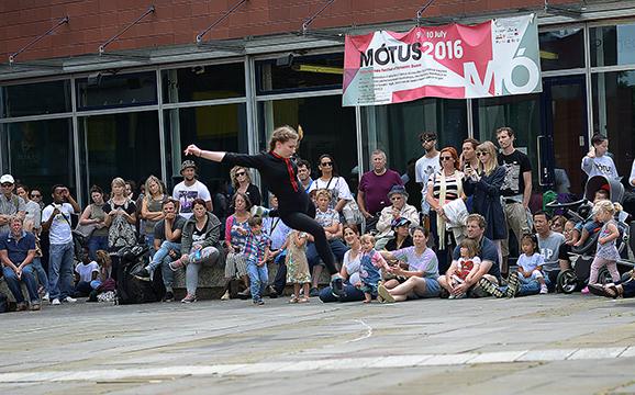 motus (65)