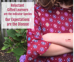 Got a Reluctant Gifted Learner?