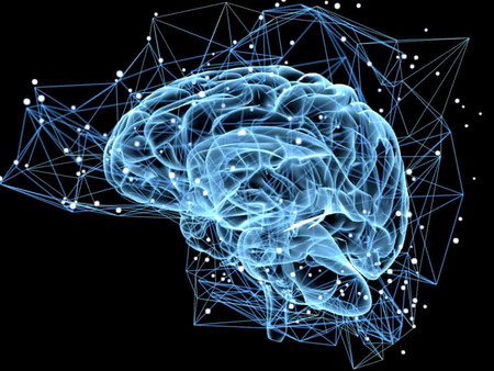 HARNESS THE POWER OF YOUR BRAIN
