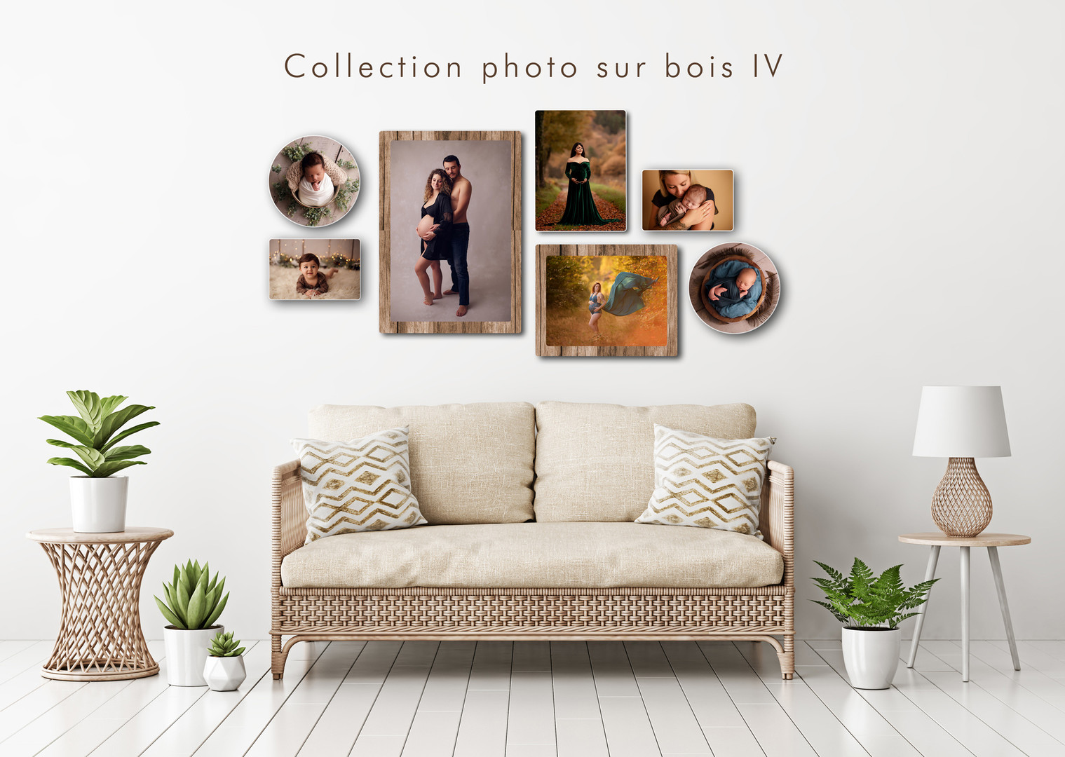 collection-IV.jpg