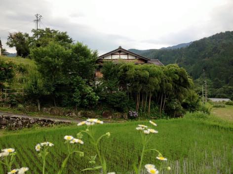 An idyllic old samurai waystation called Tsumago in the Japanese Alps