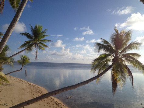 Calm waters and swaying palm trees on this beach in the Marshall Islands