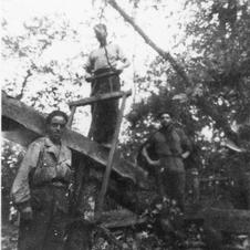 Troops Using A  Two Man Pit Saw