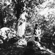 Troops Using A Two Man Chainsaw