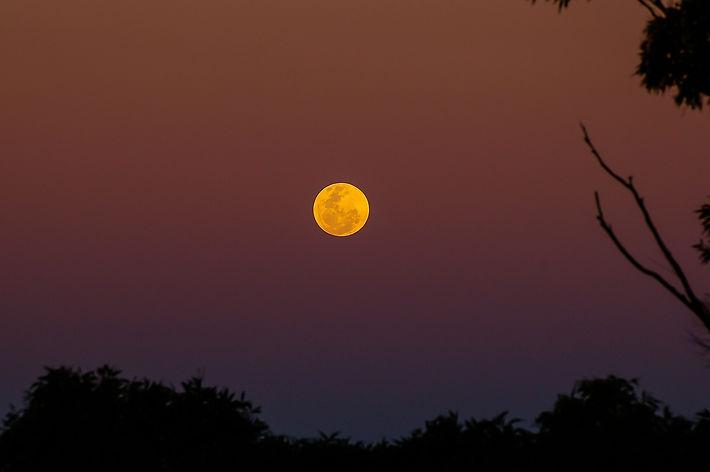 moon-746827_1920.jpg