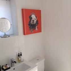 Bathroom, shower, WC, Vanity basin