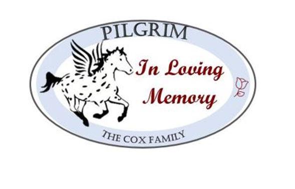 Platinum_PilgrimCox2.JPG