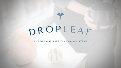 Dropleaf Communications