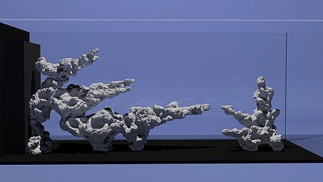 aquascape in 3D