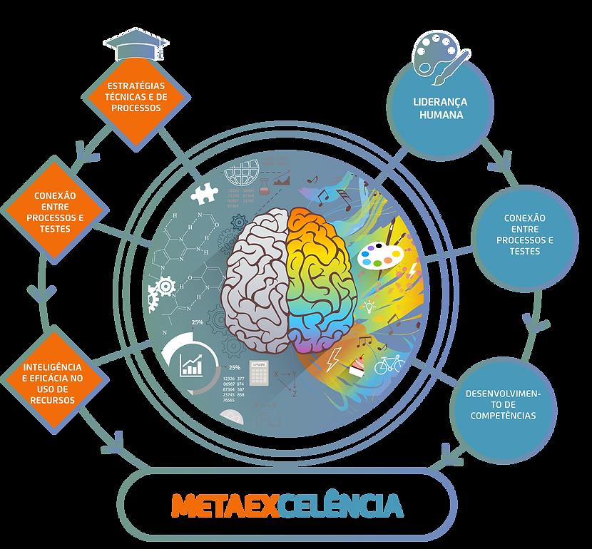 cerebro tecnico e humano-01-01.png
